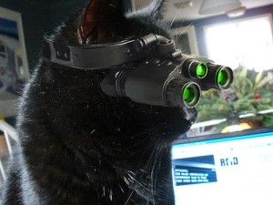 Kitty's new night vision goggles by h?lf empty via Flickr